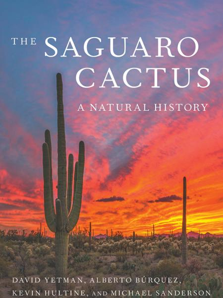 Book cover showing saguaro cactus and desert sunset